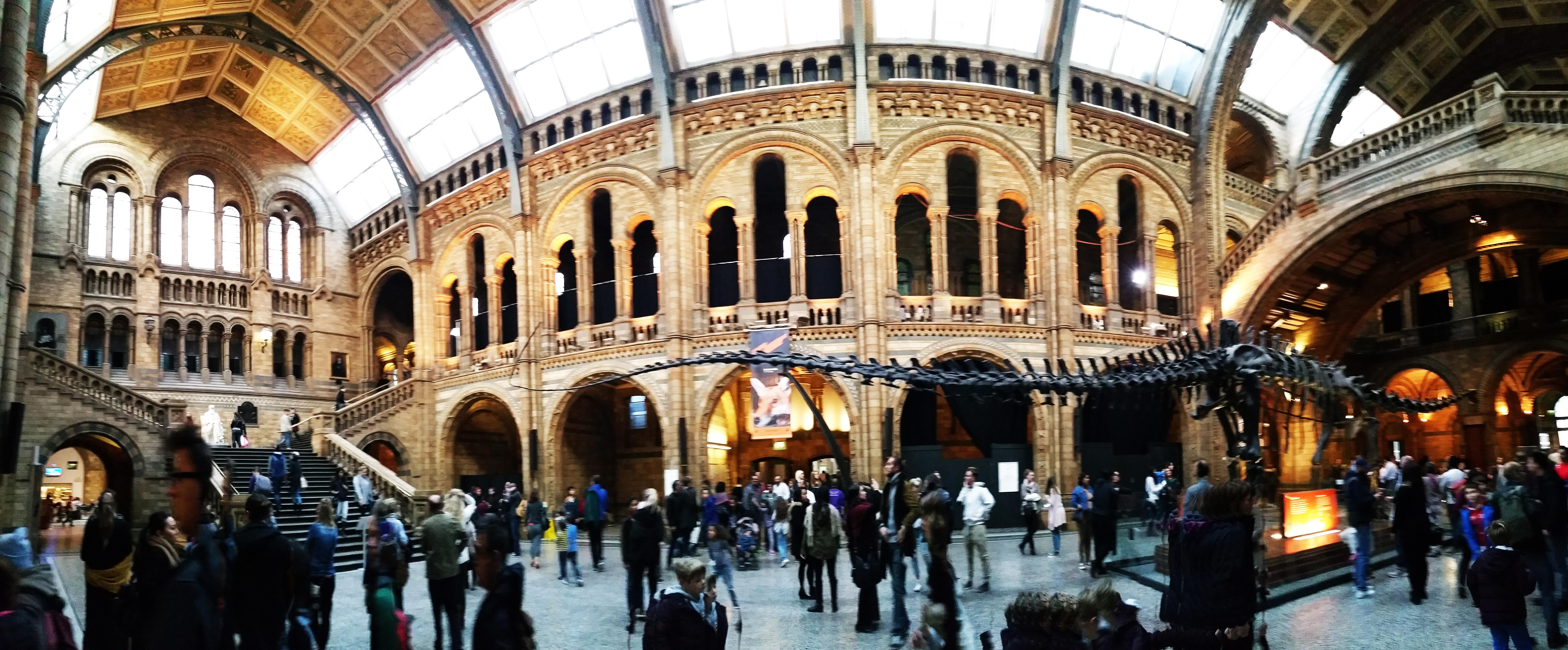 Descubre el museo de historia natural de Londres, es gratis.